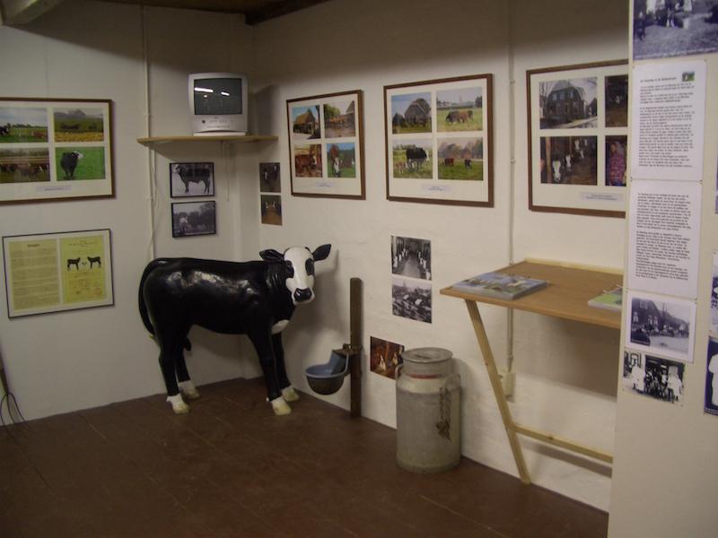 Blaarkoppen tentoonstelling